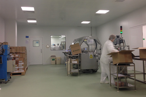 Packaging Area in Pharmaceutical Production Facilities in Zentiva S.A., Bucharest, Romania - view 06