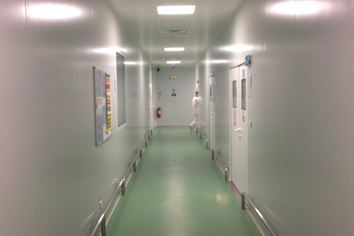 Packaging Area in Pharmaceutical Production Facilities in Zentiva S.A., Bucharest, Romania - corridor view 03